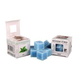 Scented Cubes Minze