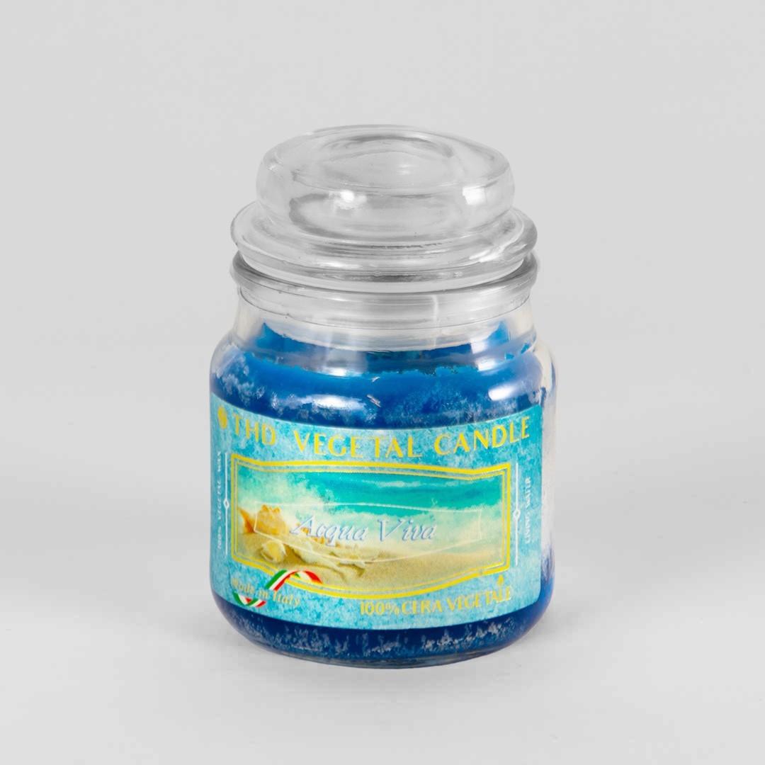 Kerze im Glas VEGETAL - Belebendes Wasser 100g